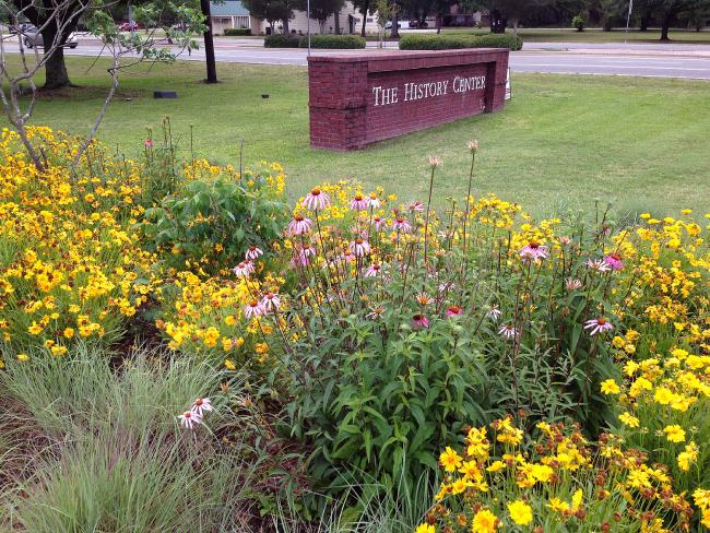 Native Plants at The History Center