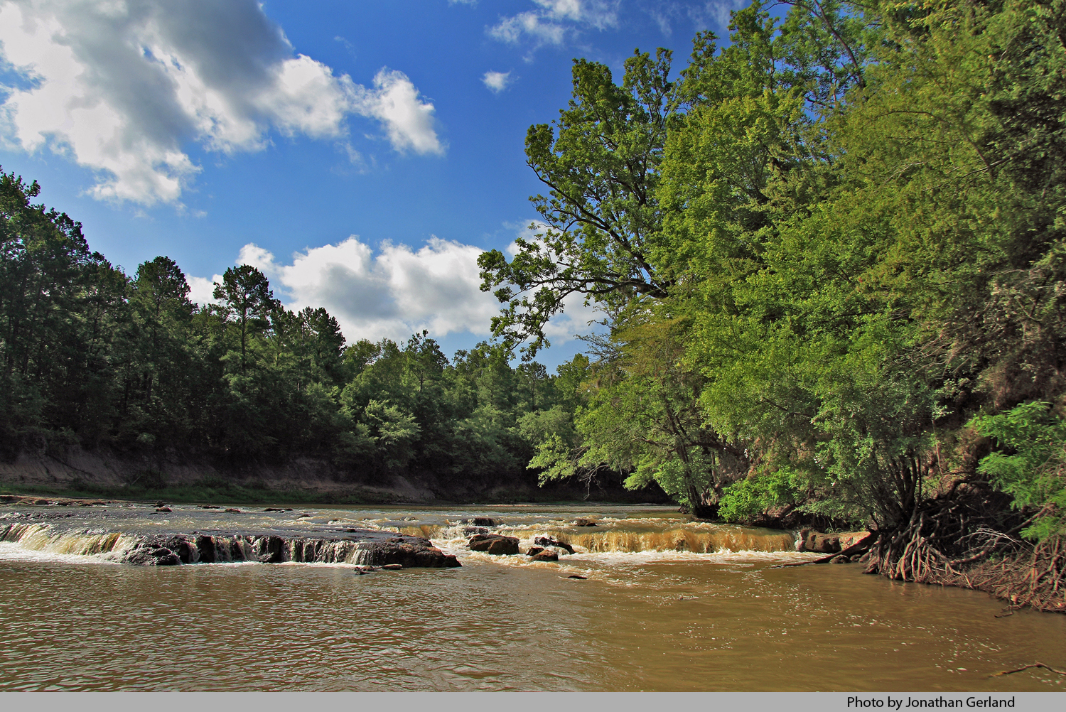 in forest land  special places in the east texas